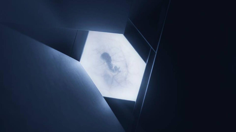 idesign ellipsis 09