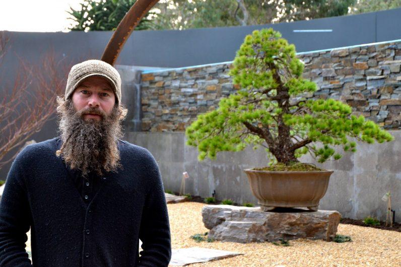 idesign nhom nghe si danh ca doi de trong cay bonsai 1