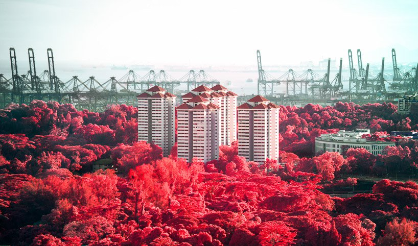 id floral phantasmagoria 11