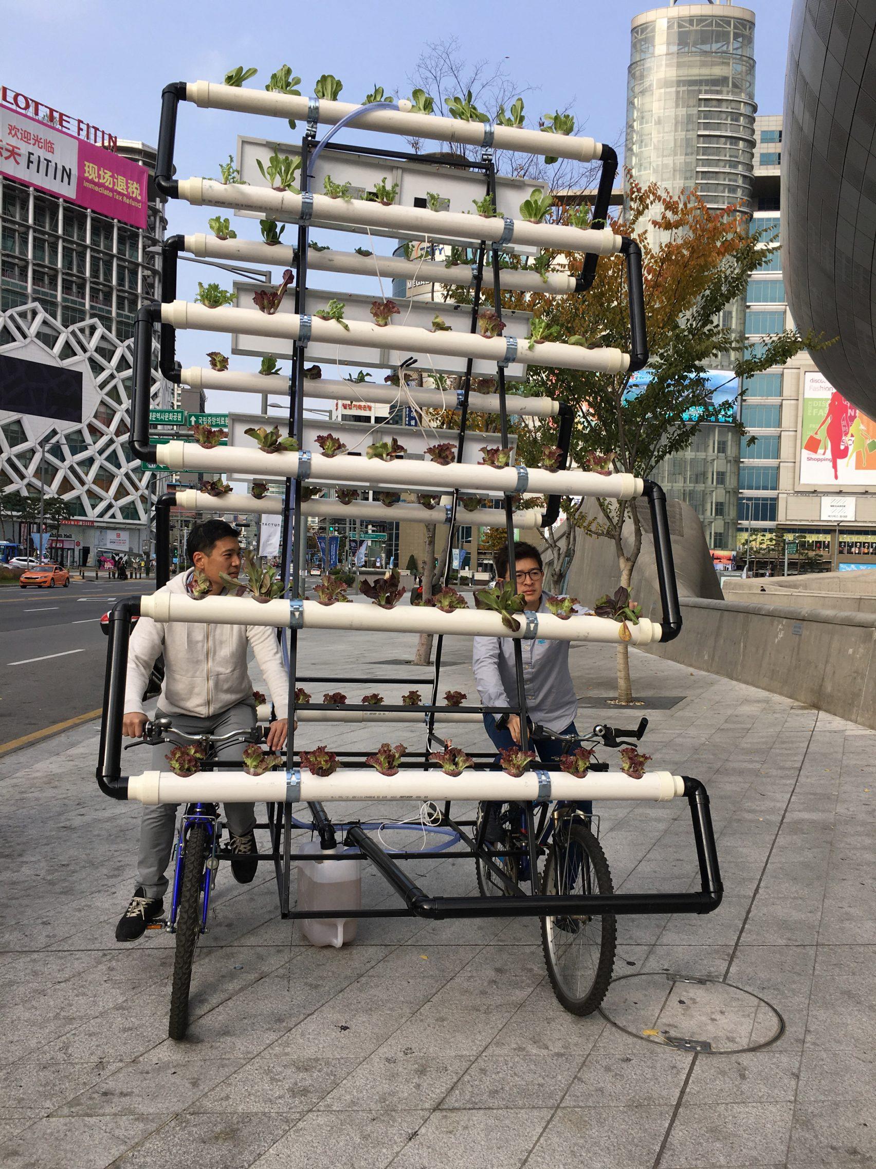 idesign bike share farm y tuong giup dan thanh thi chiu kho trong cay hon 04