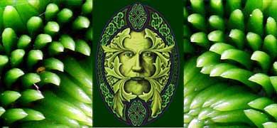 green-man-plant