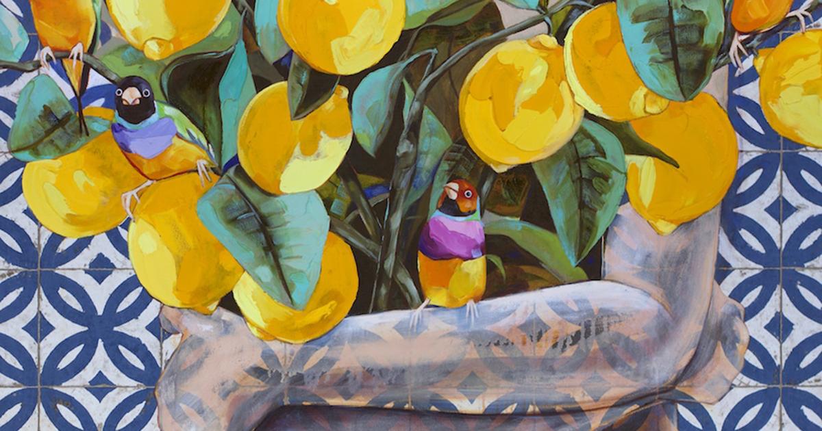 Wallflower - Những đoá hoa bên lề mạnh mẽ độc lập