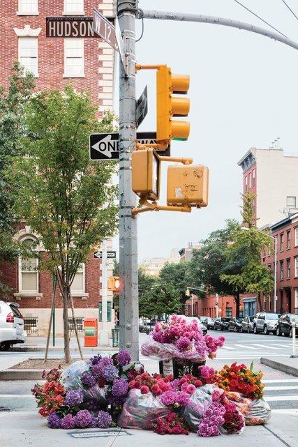 idesign chi trong mot dem thanh pho new york phu day hoa mot cach bi an va day la nguyen nhan 2