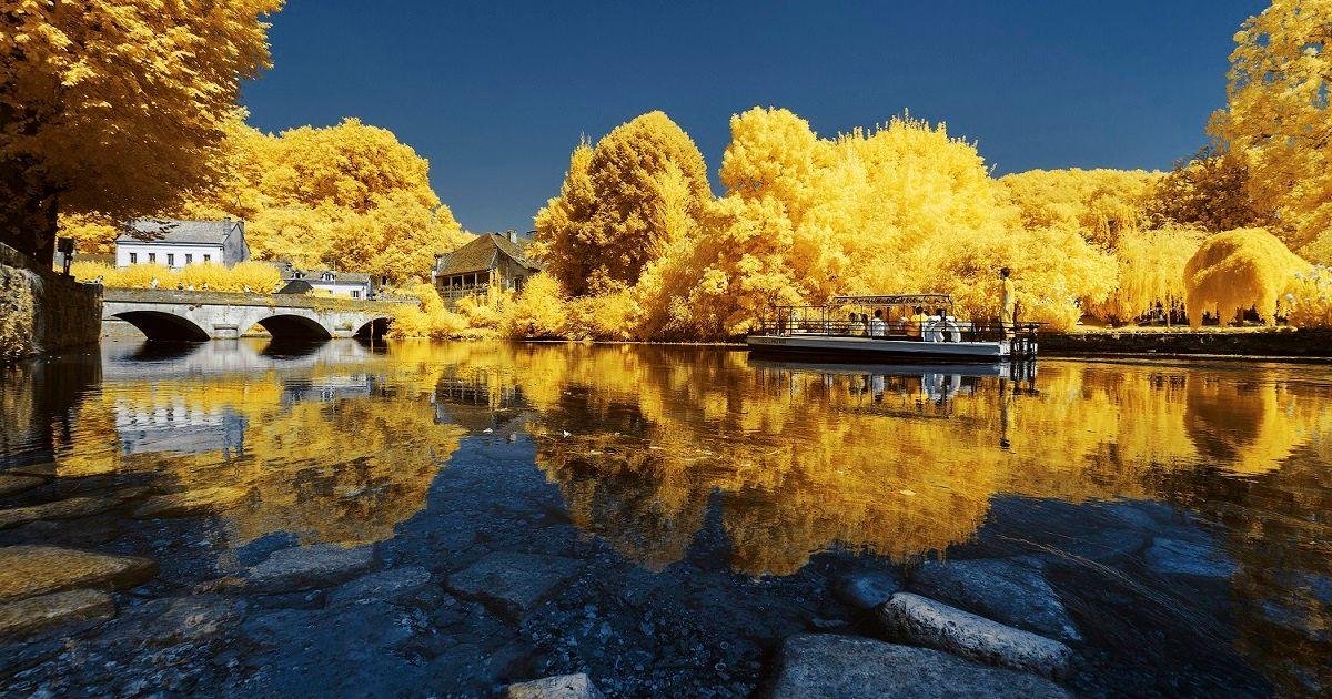 Lạc vào thế giới khác qua bộ ảnh thiên nhiên màu vàng của NAG người Pháp