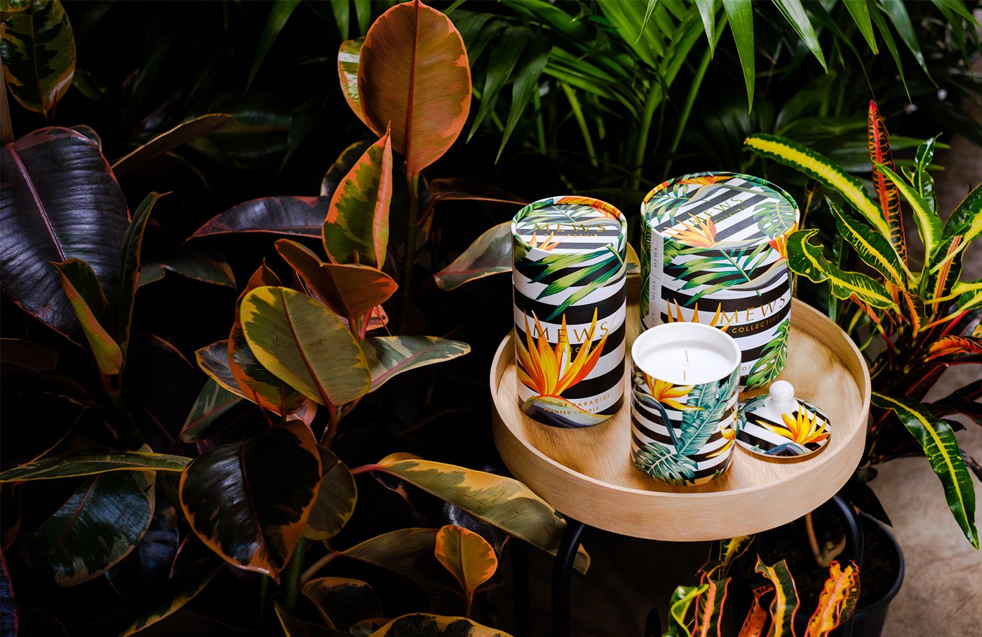 Bộ ảnh hoà mình vào thế giới sắc màu và ngào ngạt hương thơm từ Mews Collective