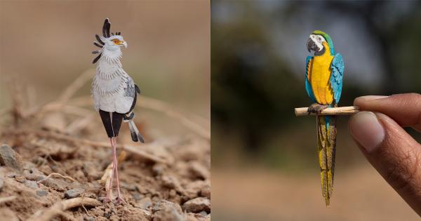 365 Days of Miniature: Bộ sưu tập các loài chim sống động từ giấy của hai nghệ sĩ Ấn Độ