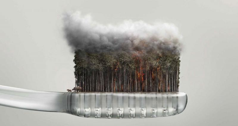 Stop the Haze - Chiến dịch ngăn chặn ô nhiễm khói bụi của WWF