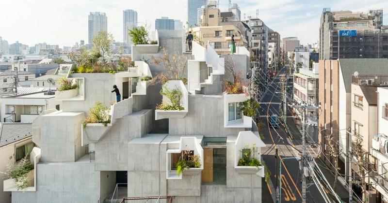 Tree Ness House - Nghệ thuật của kiến trúc lộn xộn