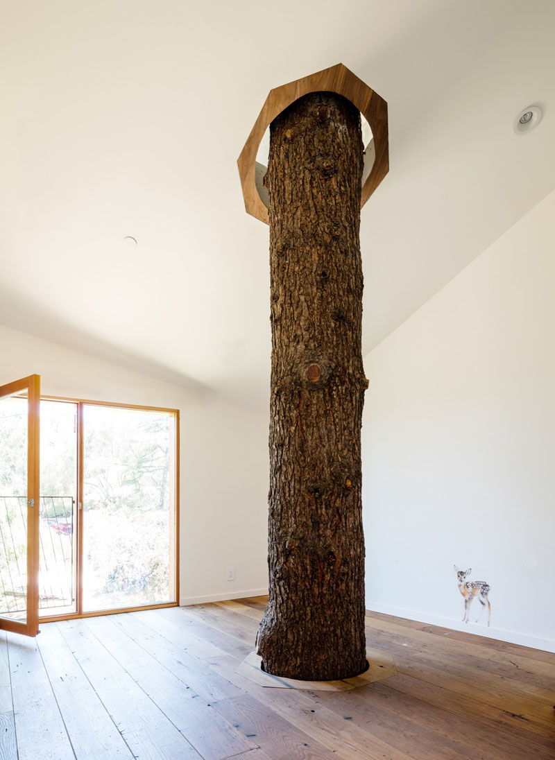 house with real tree inside 090117 1145 10