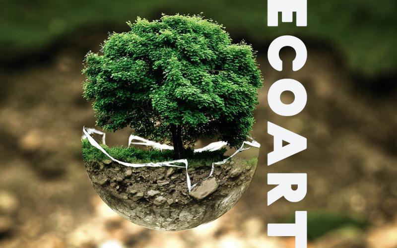 Eco Art là gì?