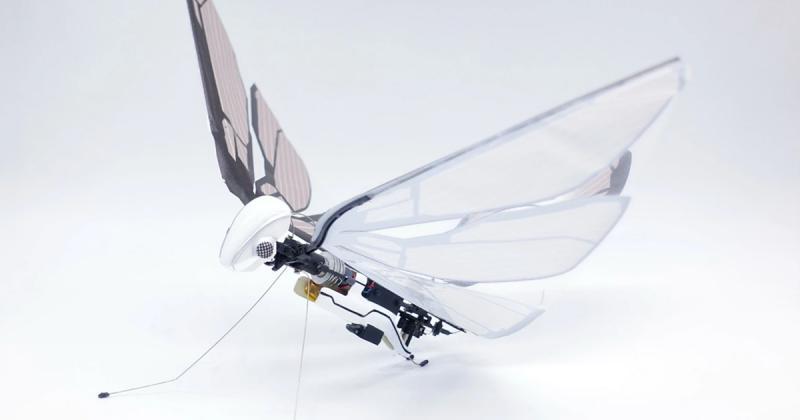 MetaFly: Tương lai mới của thiết bị bay trên không