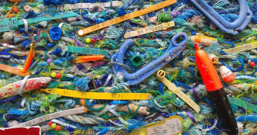 plenty more fish in the sea 2014 jo atherton