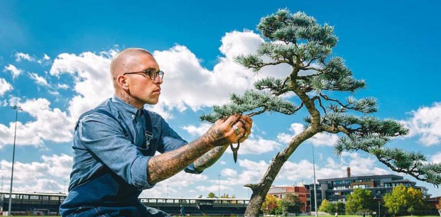 idesign nhom nghe si danh ca doi de trong cay bonsai 7