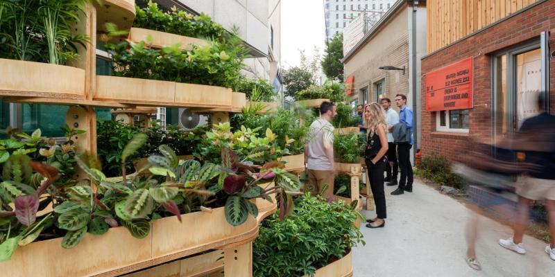 Growmore - mô hình làm vườn cho người thành thị