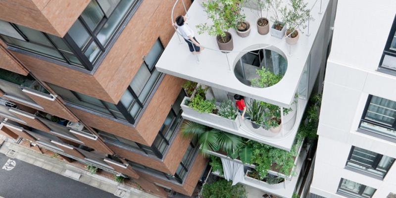 Ngôi nhà vườn trong suốt xanh mát giữa đô thị Tokyo