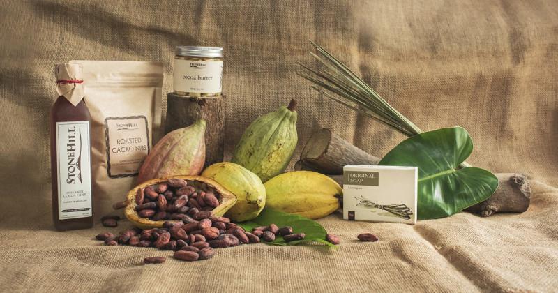 Stone Hill - thương hiệu cacao Việt vươn lên từ đồi đá cằn cỗi