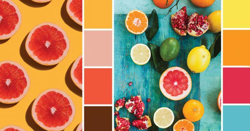 30 sự kết hợp màu sắc đầy cảm hứng