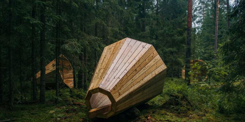 Dàn loa giữa rừng phát nhạc giao hưởng của thiên nhiên