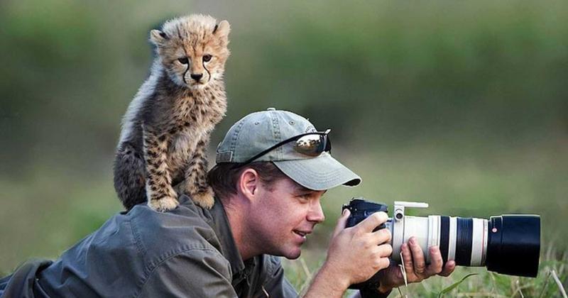 Chụp ảnh động vật hoang dã đúng cách