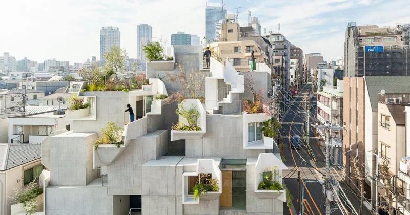 Tree-ness House - Ngôi nhà hình thành từ nguyên lý cây cối
