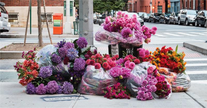 Nghệ sỹ New York biến thùng rác thành bình hoa