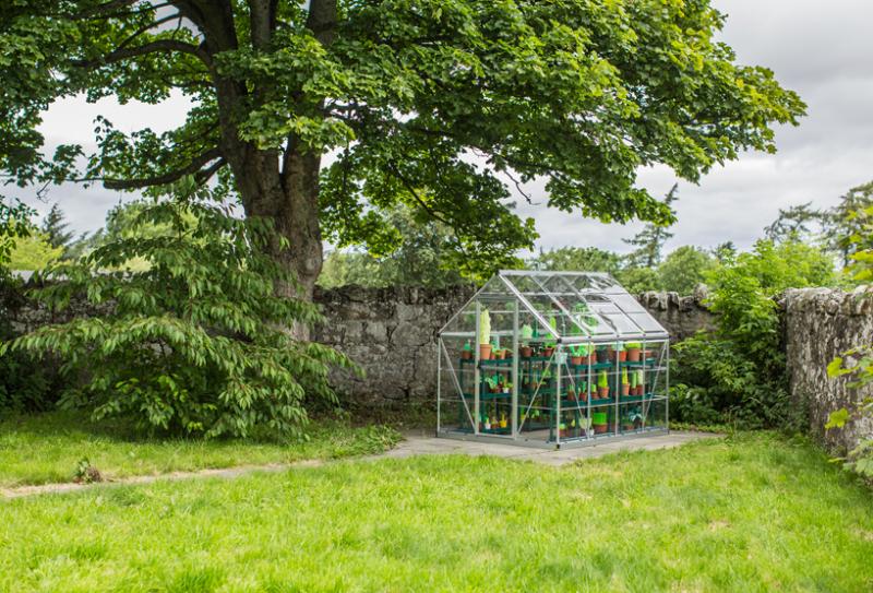 """Nhà kính ở Scotland trồng cây """"không bao giờ lớn!"""""""