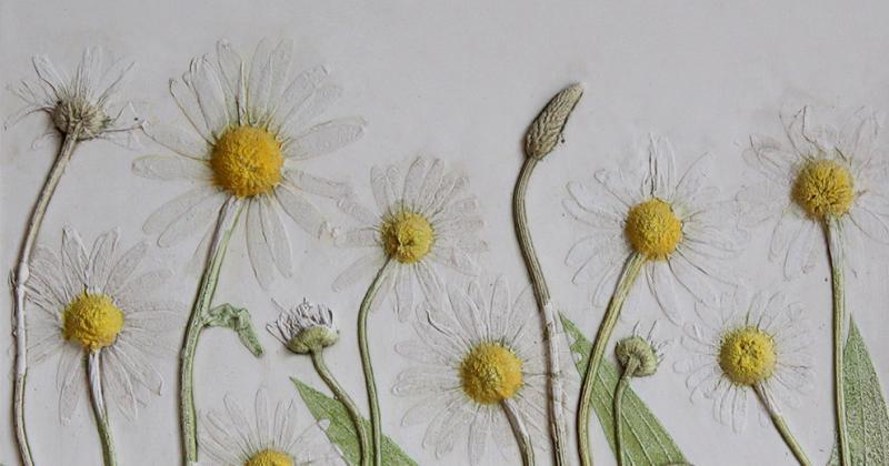 Nghệ thuật hóa thạch giúp cây cỏ, hoa lá trường tồn với thời gian