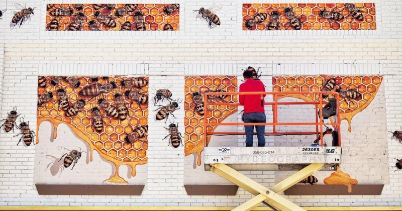 The Good of the Hive - Đi khắp thế giới vẽ 50 ngàn con ong