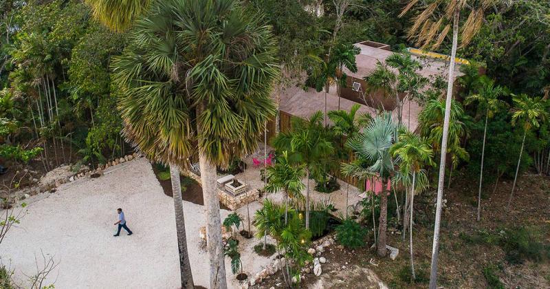 Mexico: Studio kiến trúc mọc lên giữa rừng cọ