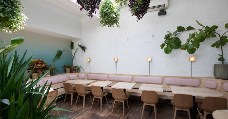 Nhà hàng Việt Nam mang không khí Đà Lạt đến Brooklyn