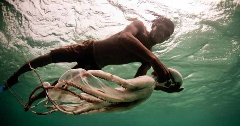 Bajau Laut: người du mục cuối cùng sống trên biển.
