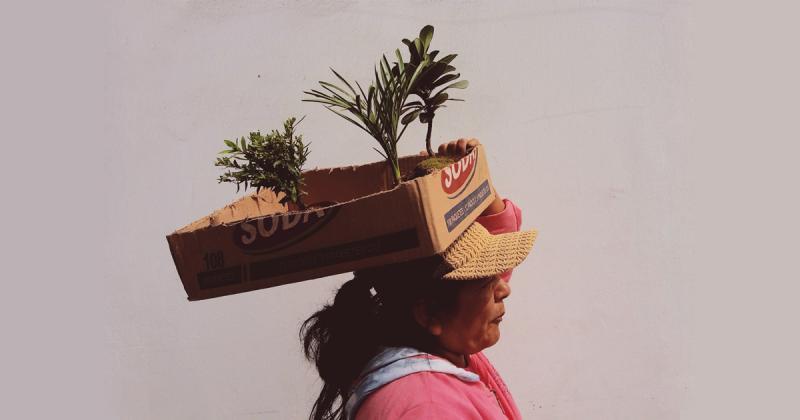 """City Song: Lima, Peru - Thành phố """"nhà khởi nghiệp"""""""