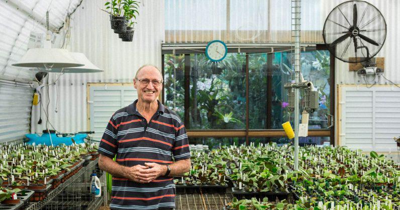 Ông lão 73 tuổi và niềm đam mê cây không có điểm dừng