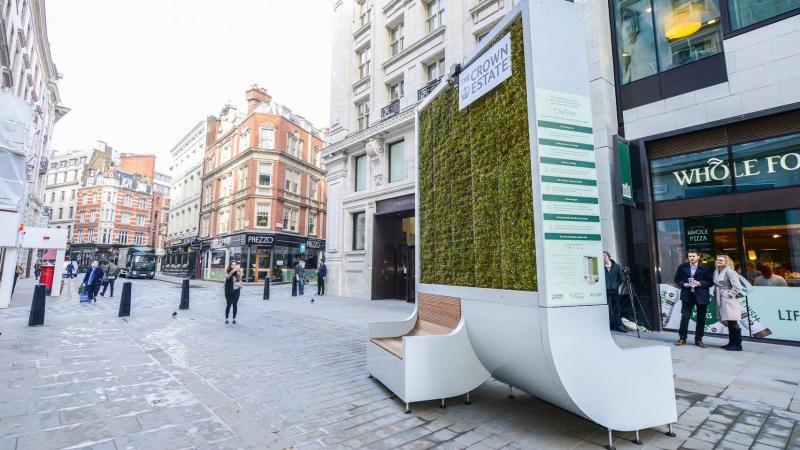 Băng ghế phủ đầy cây ở London có khả năng hấp thụ ô nhiễm tương đương với 275 cây xanh