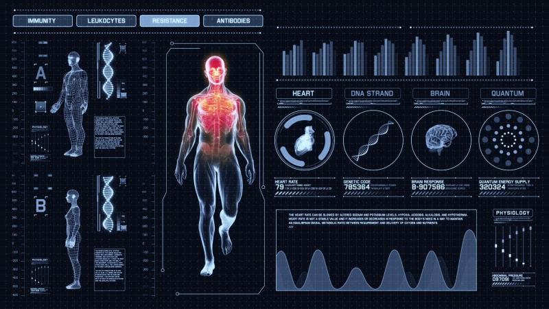 """Mối tương quan giữa """"texture"""" và giải phẫu cơ thể người"""