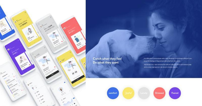 Pingpong - Công cụ thông minh giúp nắm bắt tâm lý thú cưng