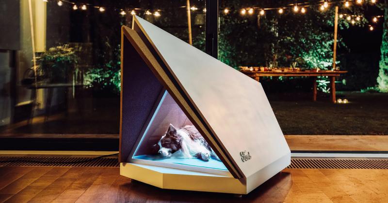 Ford phát minh ra chiếc cũi bảo vệ cún nhà bạn khỏi tiếng ồn lớn
