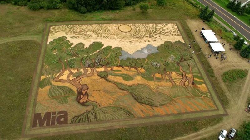 Stan Herd tái hiện lại tranh của Van Gogh từ cây và đất