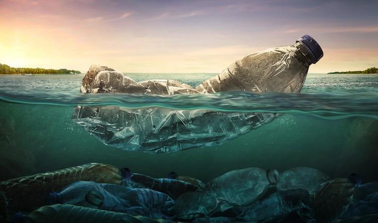 6 nghệ sĩ sử dụng nghệ thuật lên tiếng bảo vệ Đại Dương