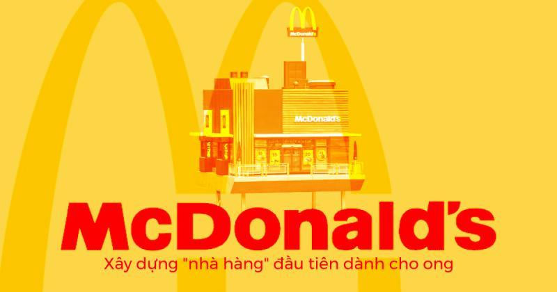 """McDonald xây dựng """"nhà hàng"""" đầu tiên dành cho ong"""