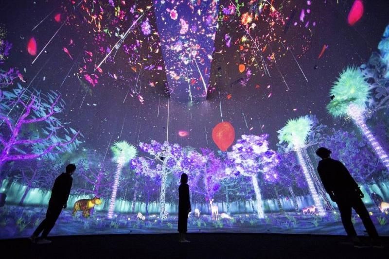 Digital Exhibition: Tương lai bùng nổ của VR/AR trong triển lãm thời đại kỹ thuật số