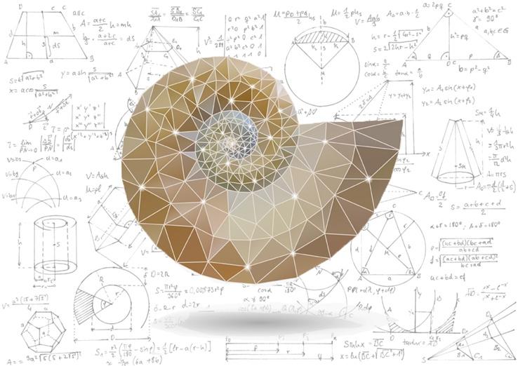 """Vẻ đẹp của toán học """"thổi hồn"""" vào nghệ thuật"""