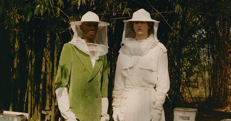 Bộ ảnh thời trang lấy chủ đề về loài ong của nhiếp ảnh gia Jin Jia Ji