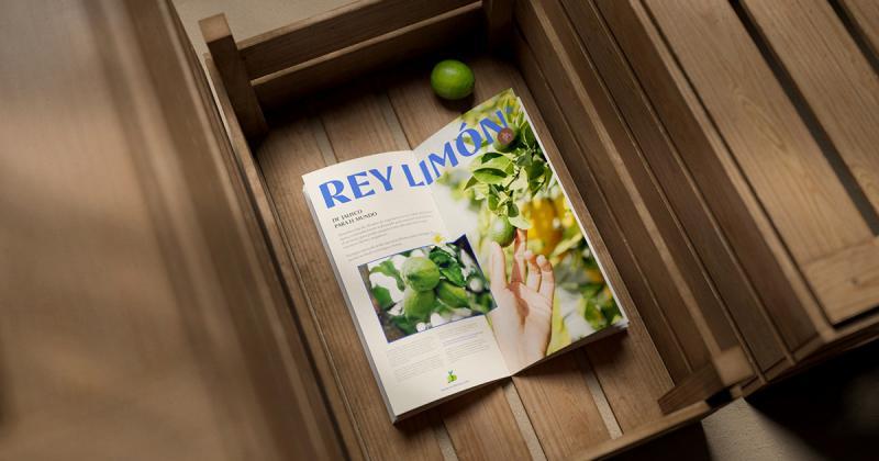 Bộ nhận diện tươi mát dành cho thương hiệu xuất khẩu chanh Rey Limón