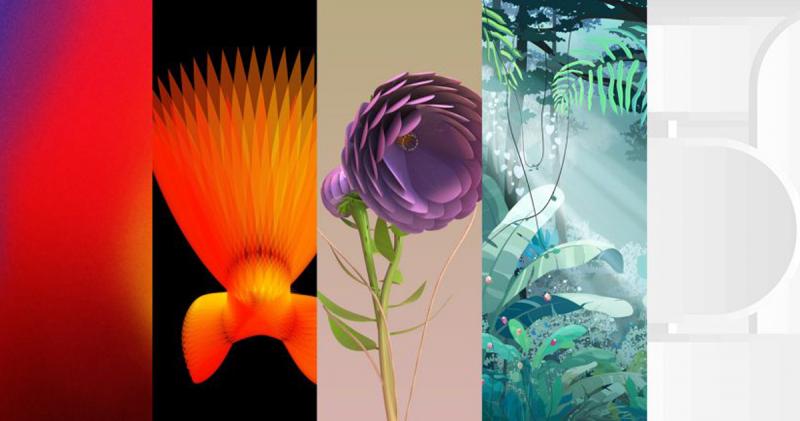 5 thiết kế ảnh nền giành chiến thắng tại cuộc thi Samsung Mobile Design