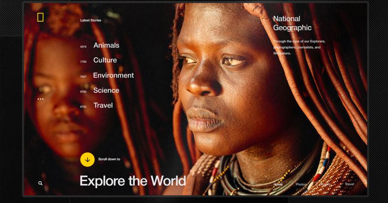 [UI Inspiration] Đến gần hơn với thiên nhiên qua trang web của National Geographic World