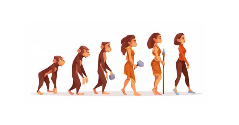 Người sáng tạo đang ở trong kỉ nguyên tuyệt vời nhất để sống? Và liệu sáng tạo có tiến hóa?