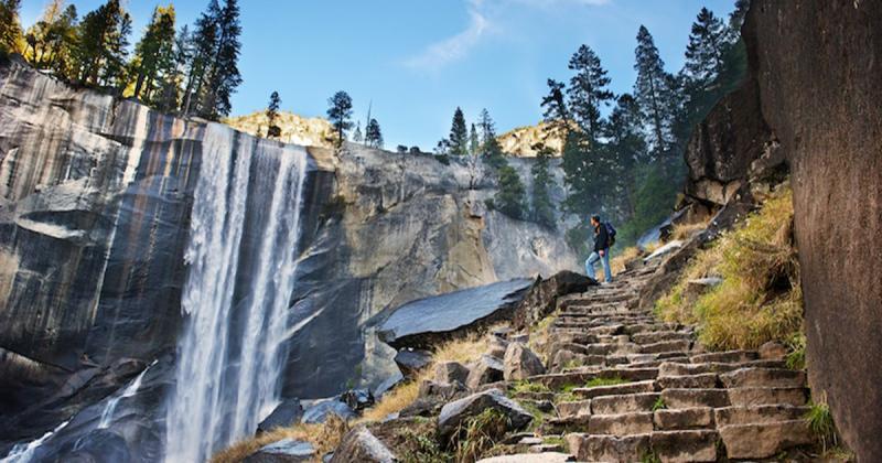 Thăm thú vườn quốc gia ở Mỹ thông qua Google Arts & Culture