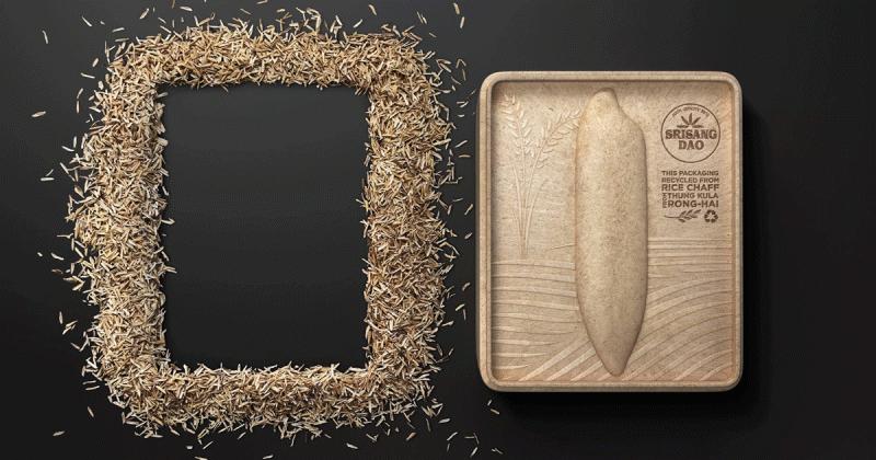 Bao bì gạo hữu cơ được làm hoàn toàn từ vỏ trấu có thể tái sử dụng thành hộp khăn giấy