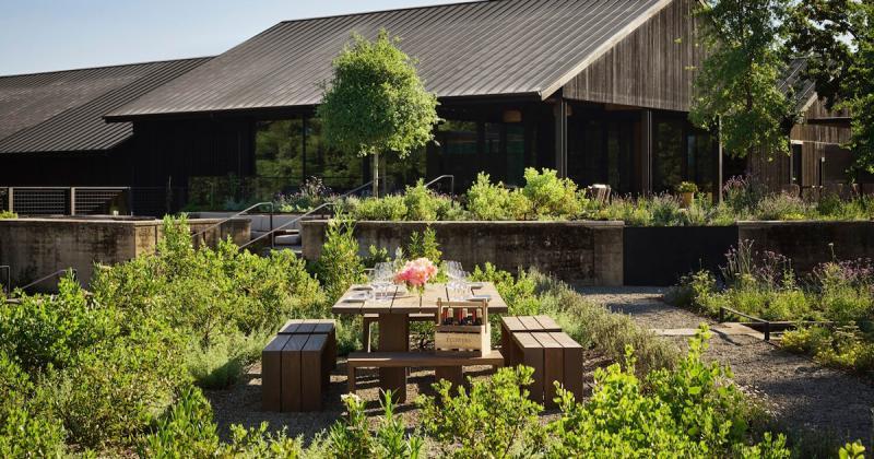 House of Flowers: Nhà khách đáp ứng mô hình du lịch hiện đại nhưng vẫn kết nối với thiên nhiên